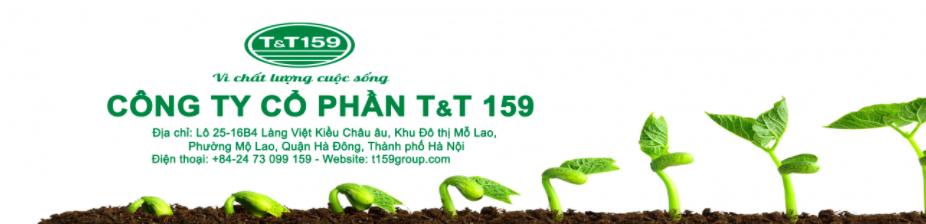 CÔng ty Cổ phần T&T 159 tuyển dụng Nhân viên Pháp chế tại hà Nội